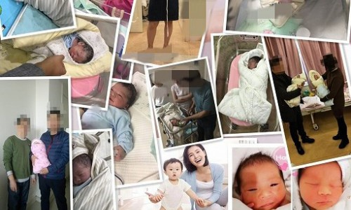 科技看點!上海供卵第三代試管技術,陸仁嘉專家圓您媽媽夢